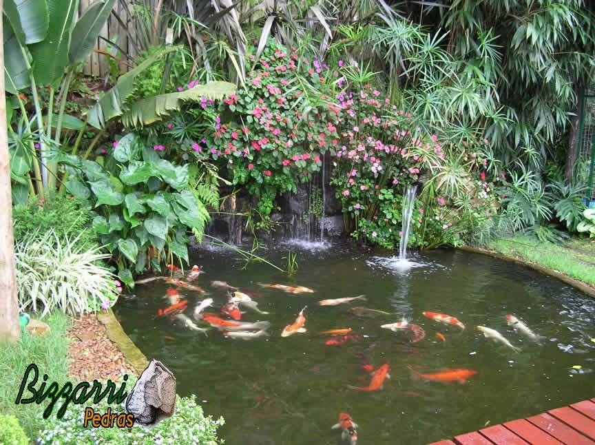 Lago ornamental com cascata de pedra e peixes de Pedras Bizzarri ...
