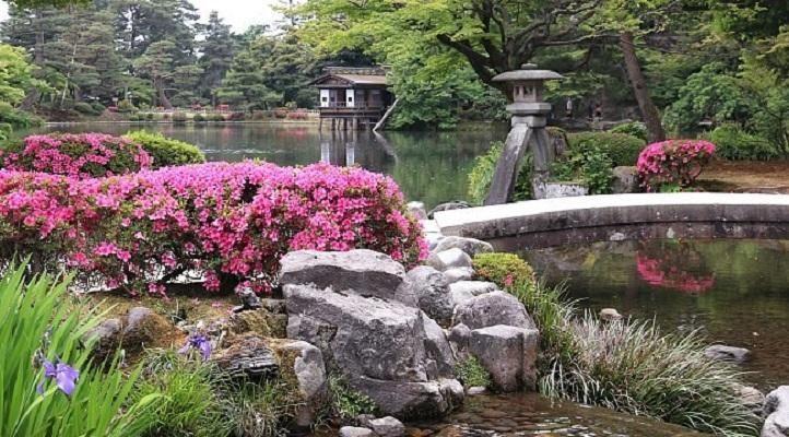 Resultado de imagem para jardim oriental
