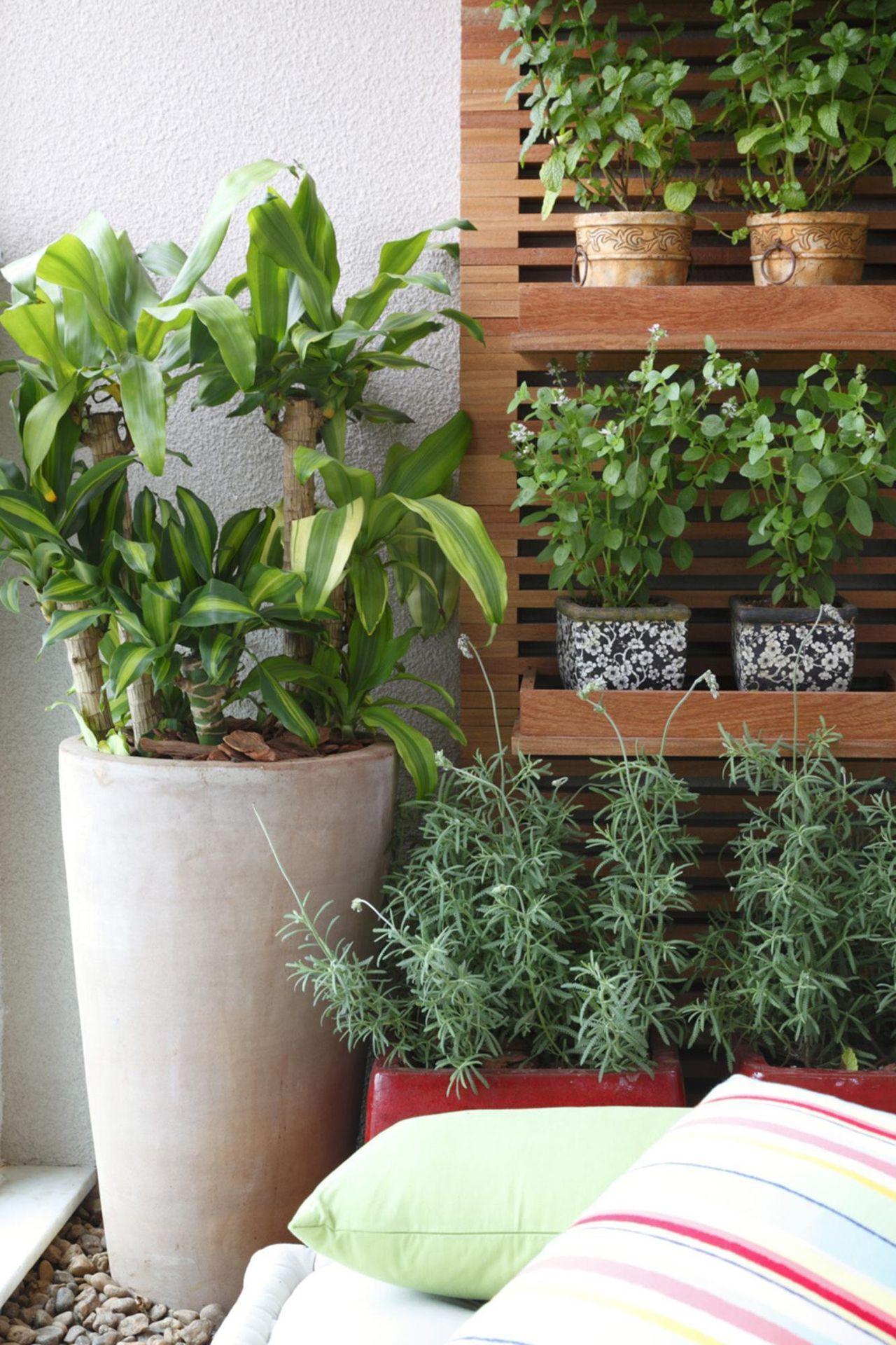 Jardim Pequeno Em Casa 35 Modelos Para Decorar Seu Ambiente